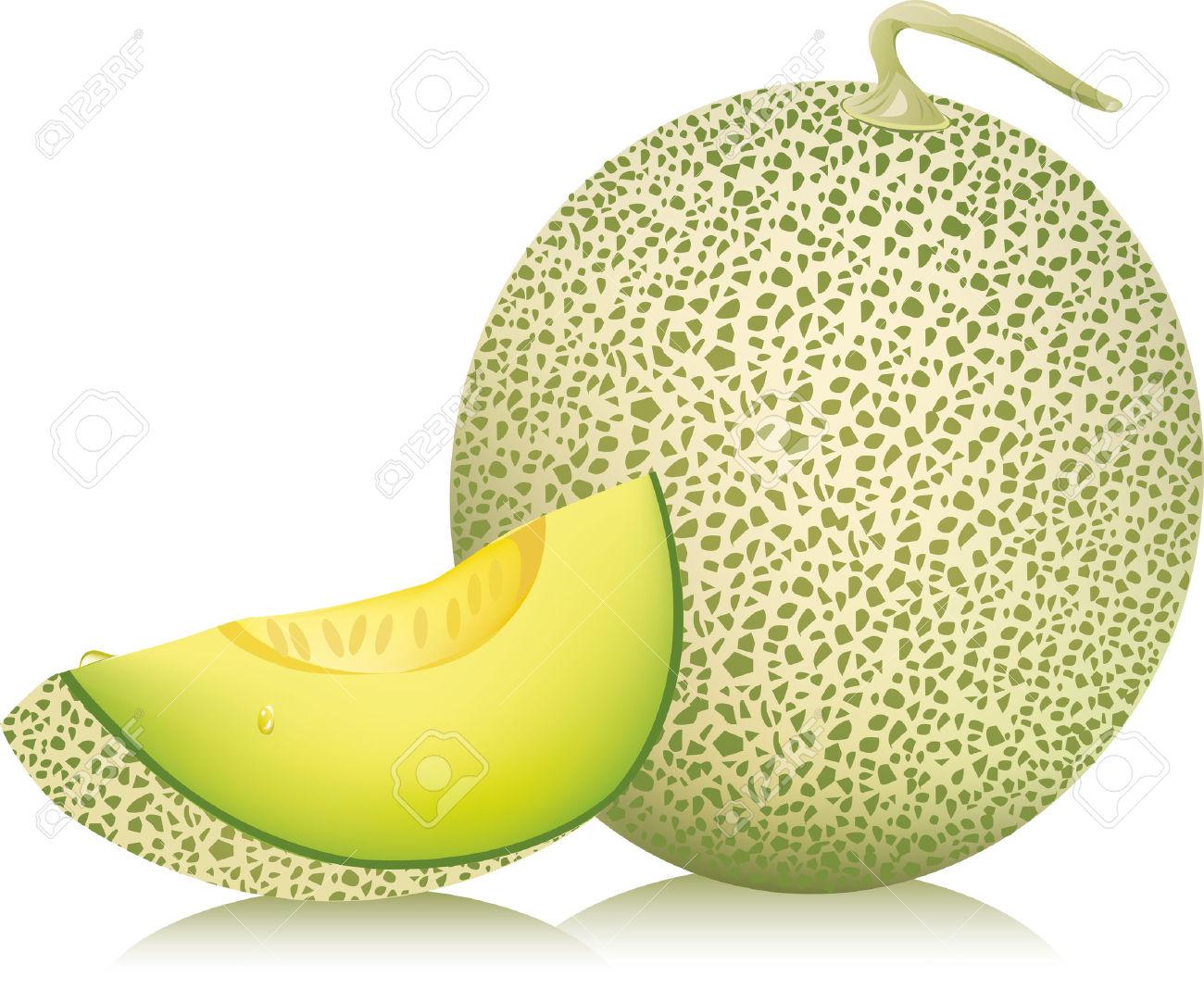 1300x1082 > Melon Wallpapers