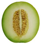 Melon Backgrounds, Compatible - PC, Mobile, Gadgets| 170x182 px