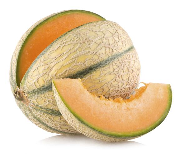 Melon Pics, Artistic Collection
