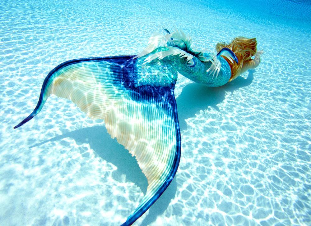 Mermaid HD wallpapers, Desktop wallpaper - most viewed