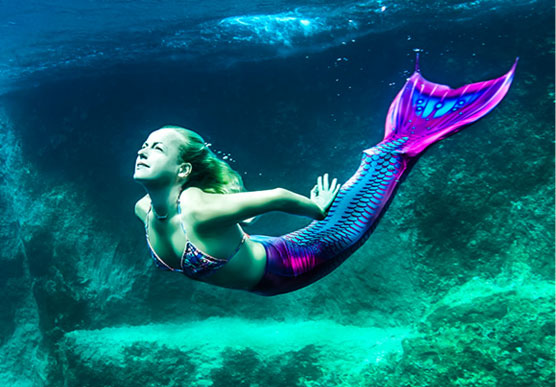 HD Quality Wallpaper   Collection: Fantasy, 556x387 Mermaid