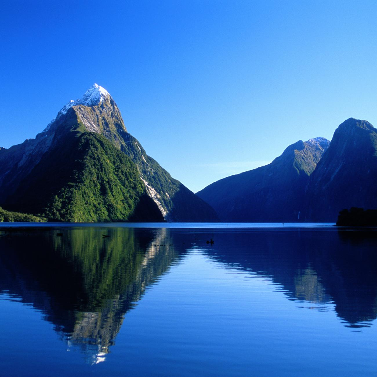 Images of Milford Sound | 1300x1300