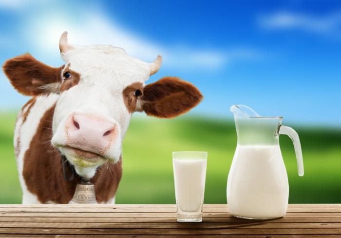 Milk #20