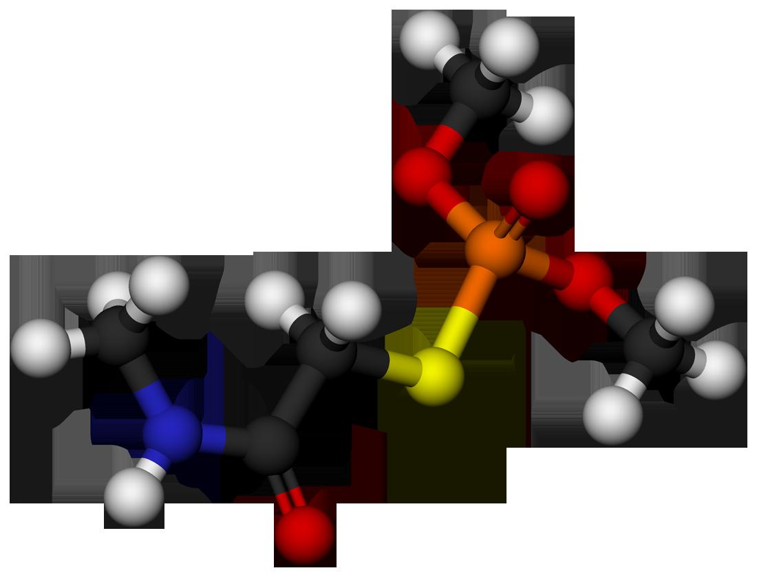 Molecule #5