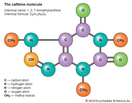 Molecule #13