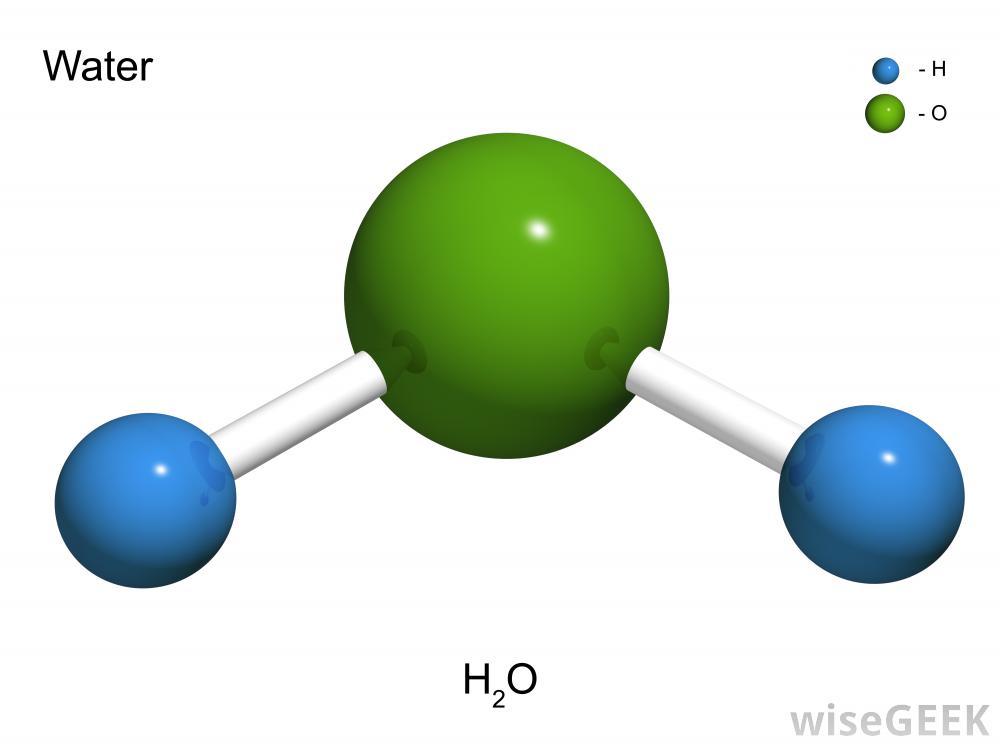 Molecule #19