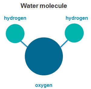 Molecule #14