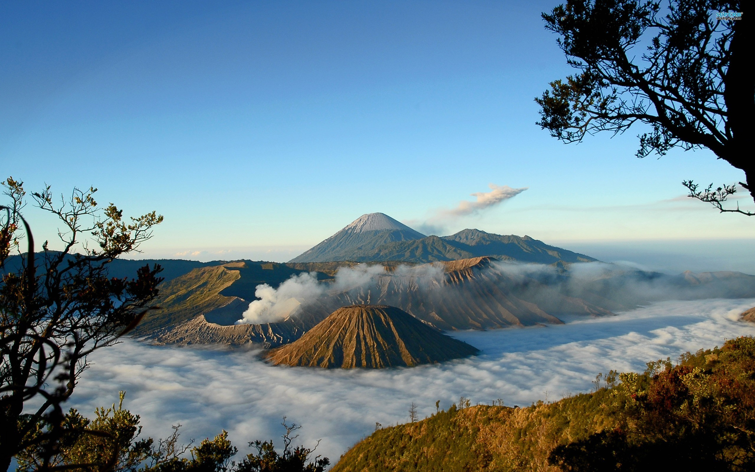 Mount Bromo Backgrounds on Wallpapers Vista