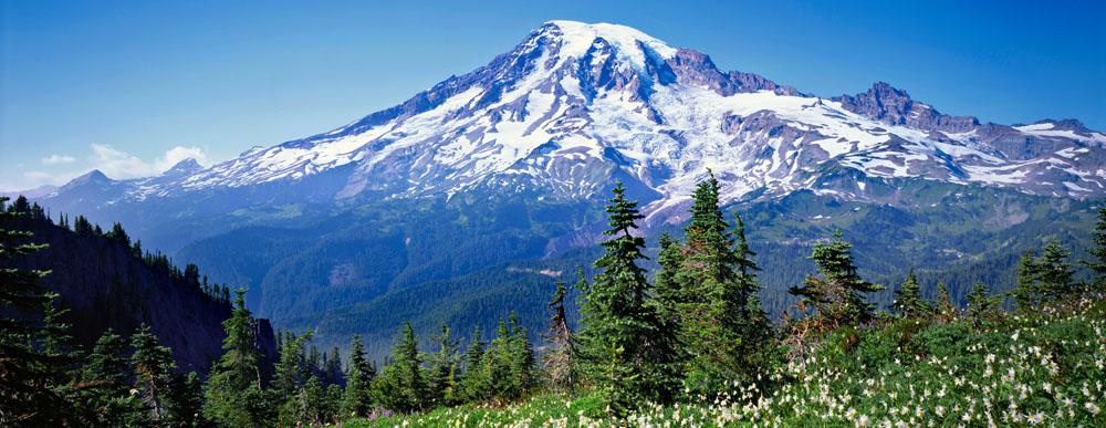 Mt Rainier Hd Wallpaper