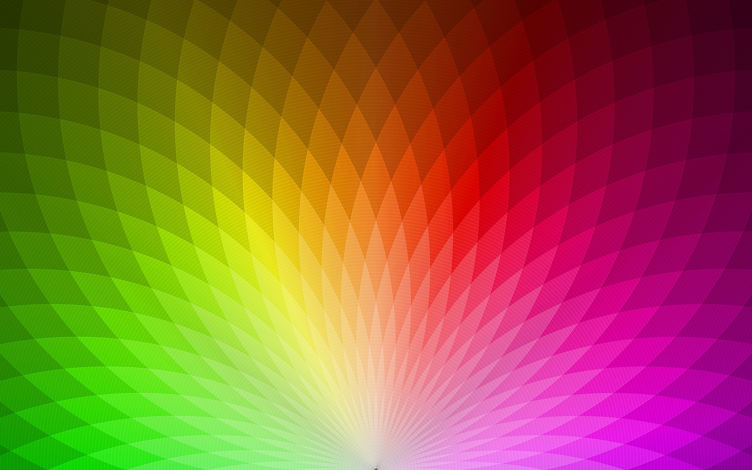 Multi Color Backgrounds, Compatible - PC, Mobile, Gadgets| 2560x1600 px