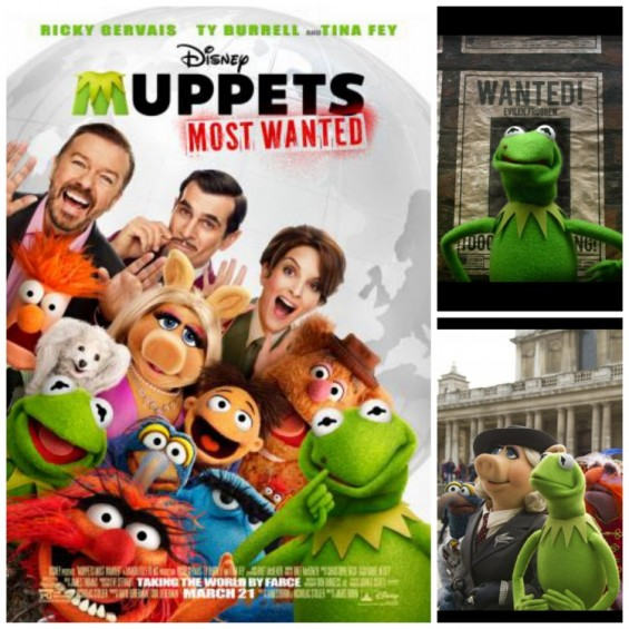 HD Quality Wallpaper | Collection: Movie, 565x565 Muppets Most Wanted