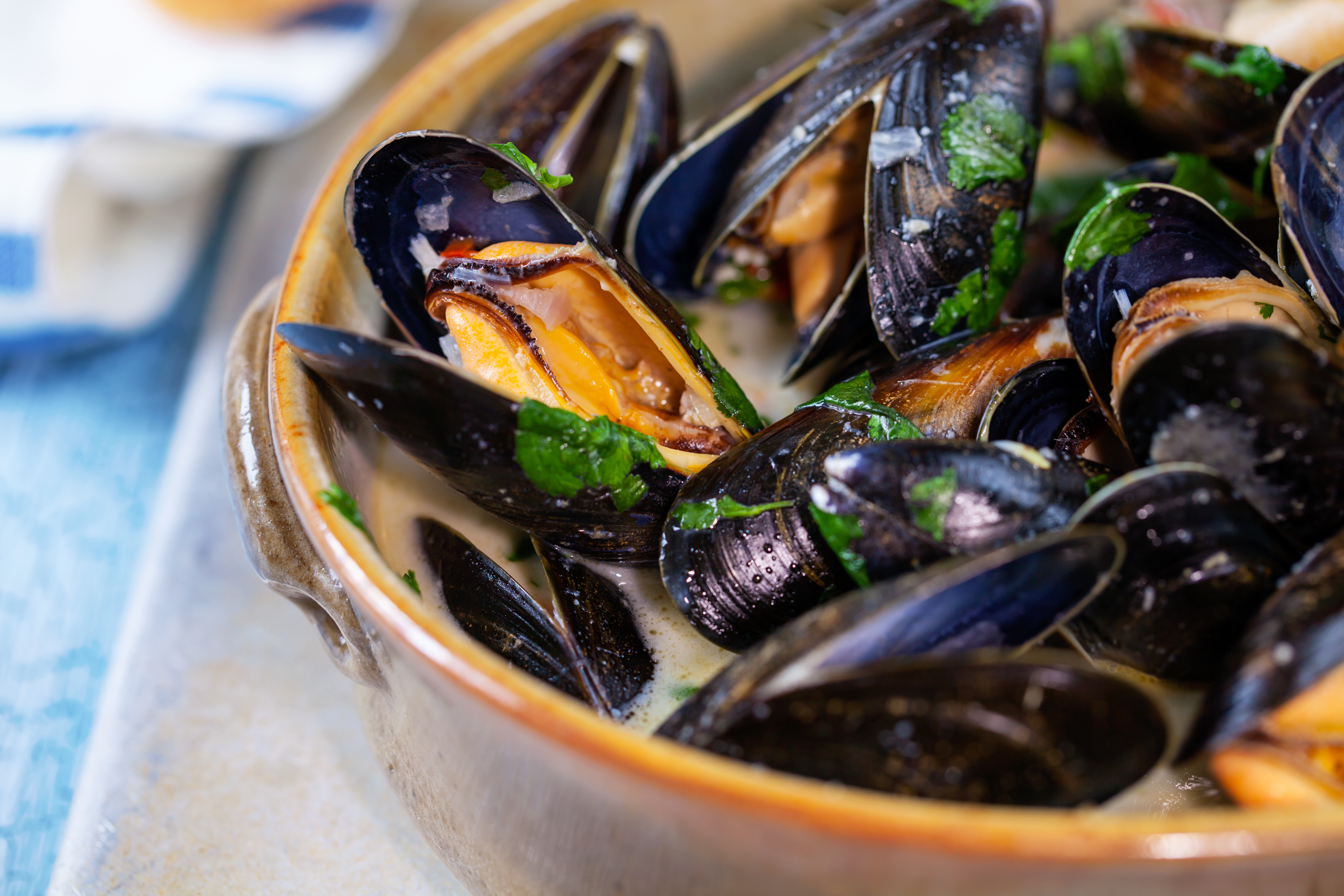 Nice wallpapers Mussels 5616x3744px