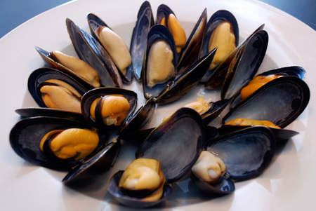 HQ Mussels Wallpapers | File 63.54Kb