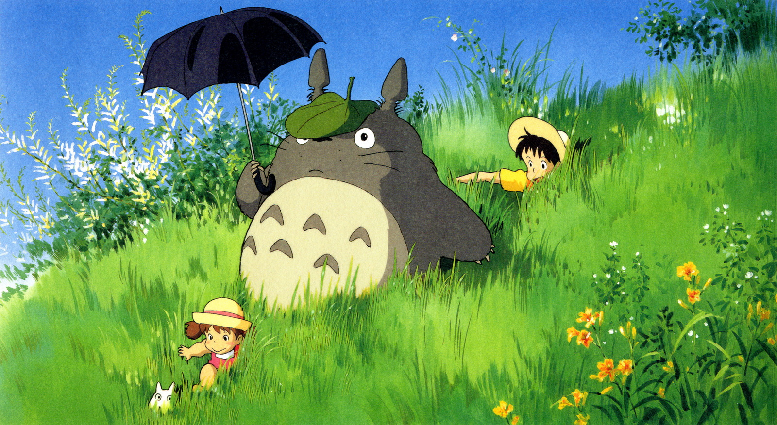 My Neighbor Totoro Backgrounds, Compatible - PC, Mobile, Gadgets| 1600x876 px