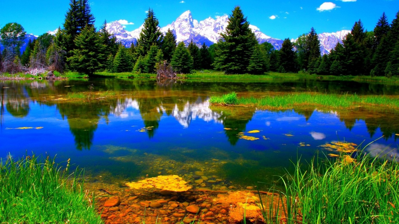 HD Quality Wallpaper | Collection: Artistic, 1366x768 Nature