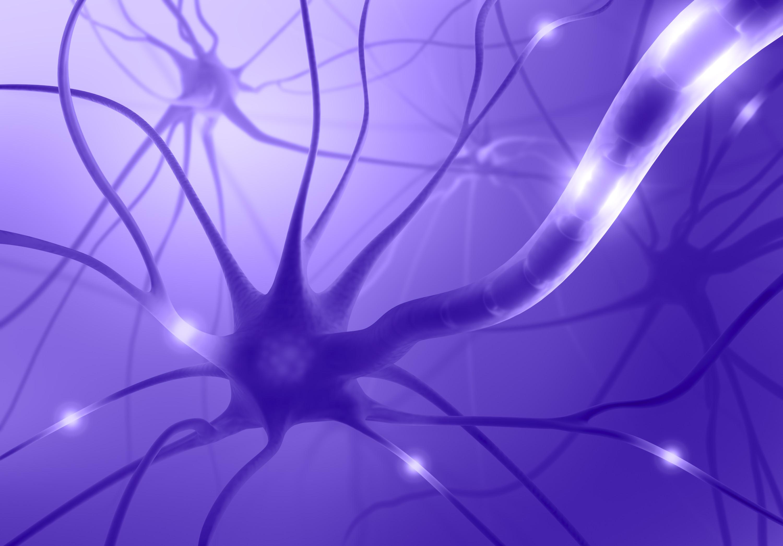 Neuron Pics, Artistic Collection