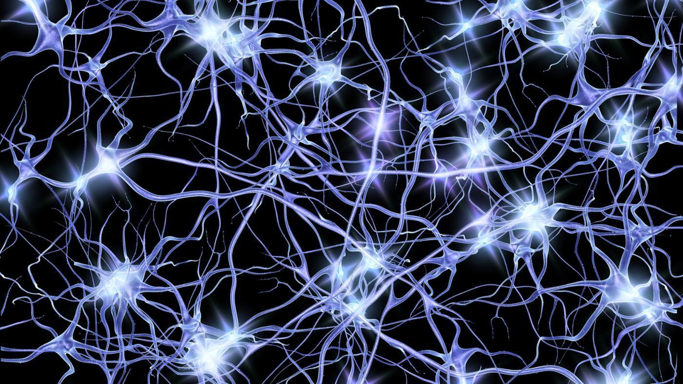 HQ Neuron Wallpapers | File 239.02Kb