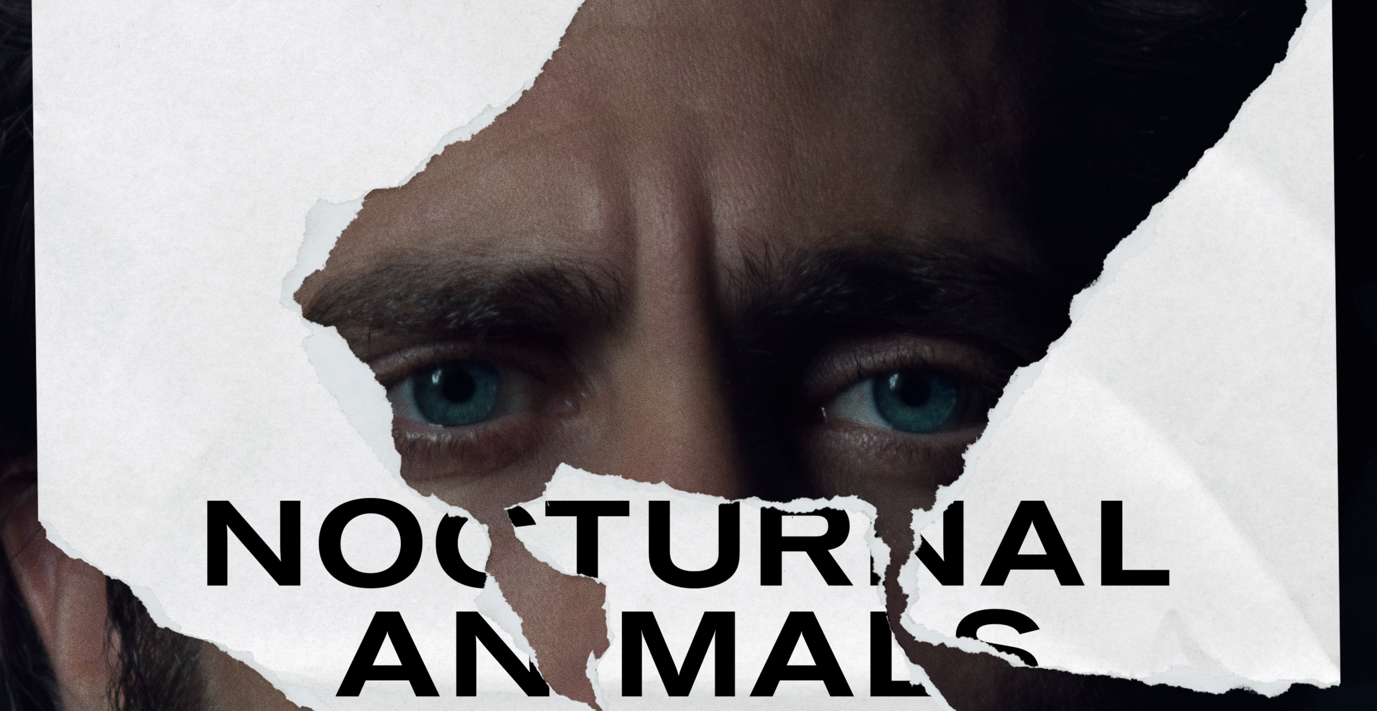Nocturnal Animals Backgrounds on Wallpapers Vista
