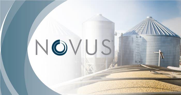 Amazing NOVUS  Pictures & Backgrounds