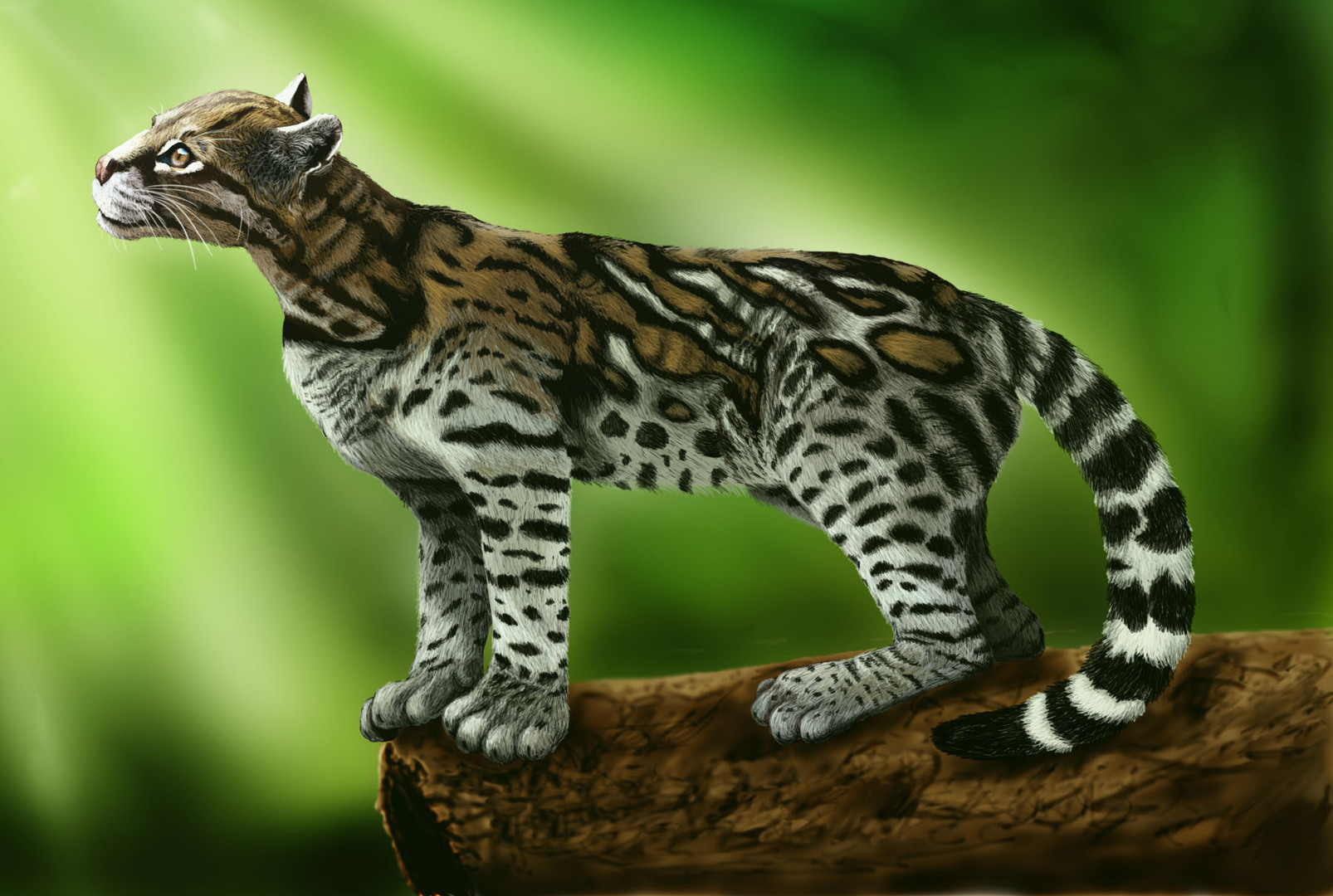 Ocelot High Quality Background on Wallpapers Vista