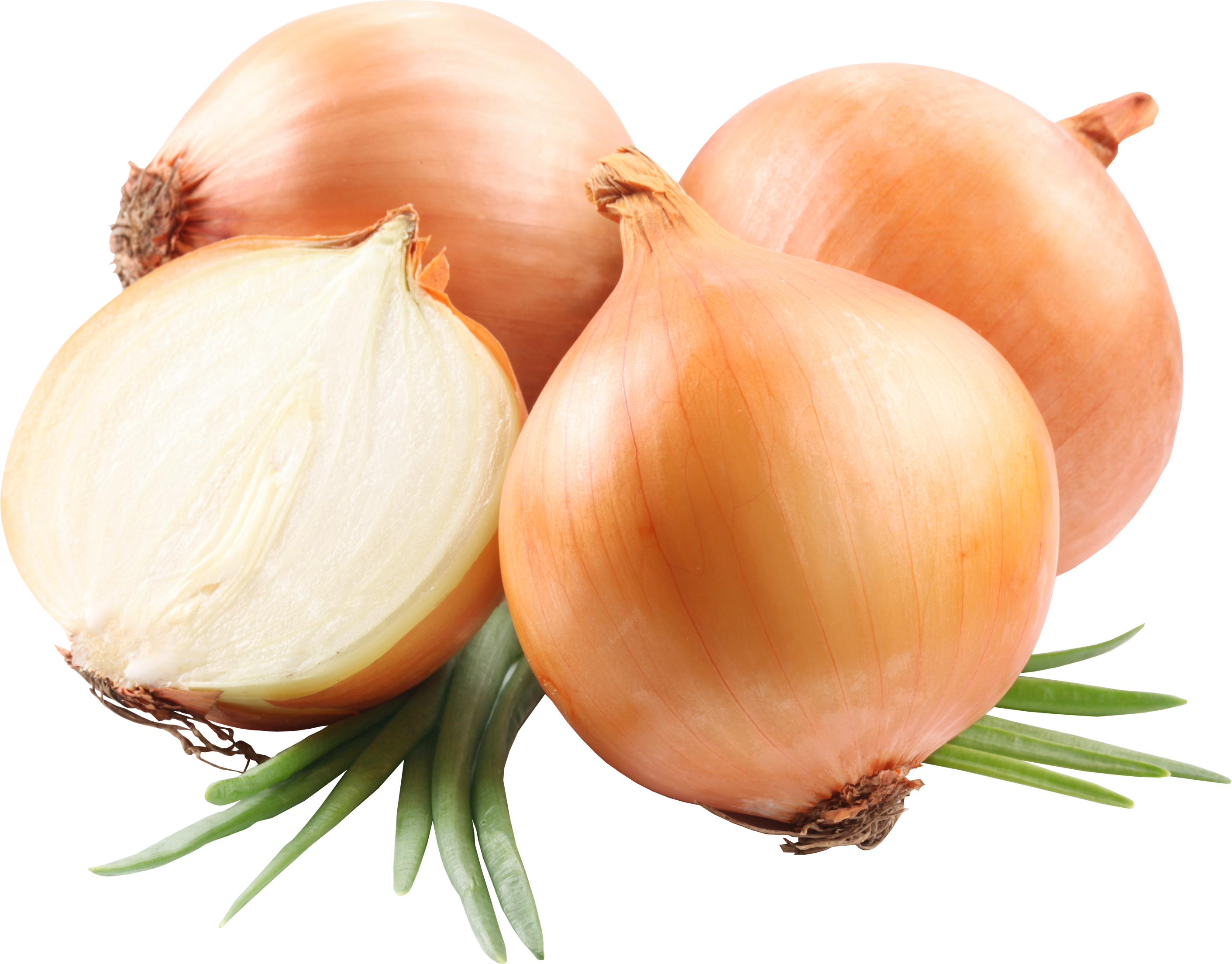 2822x2208 > Onion Wallpapers