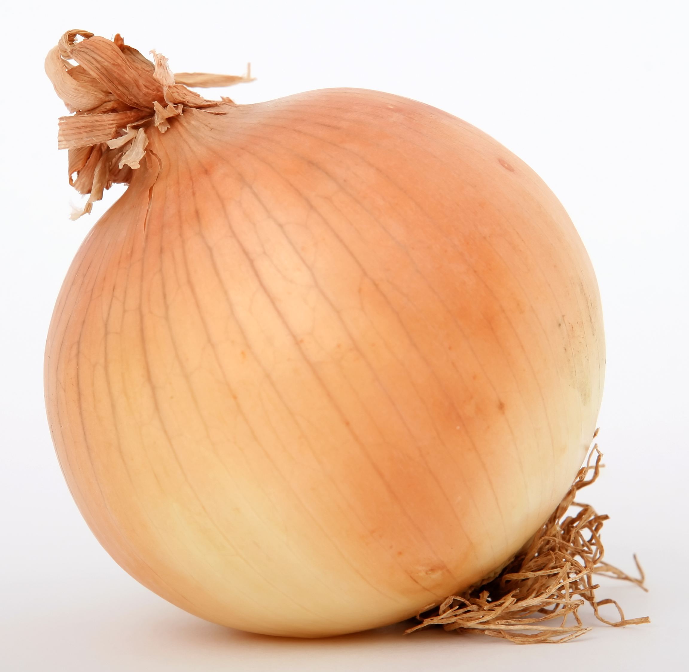 Images of Onion | 2304x2248