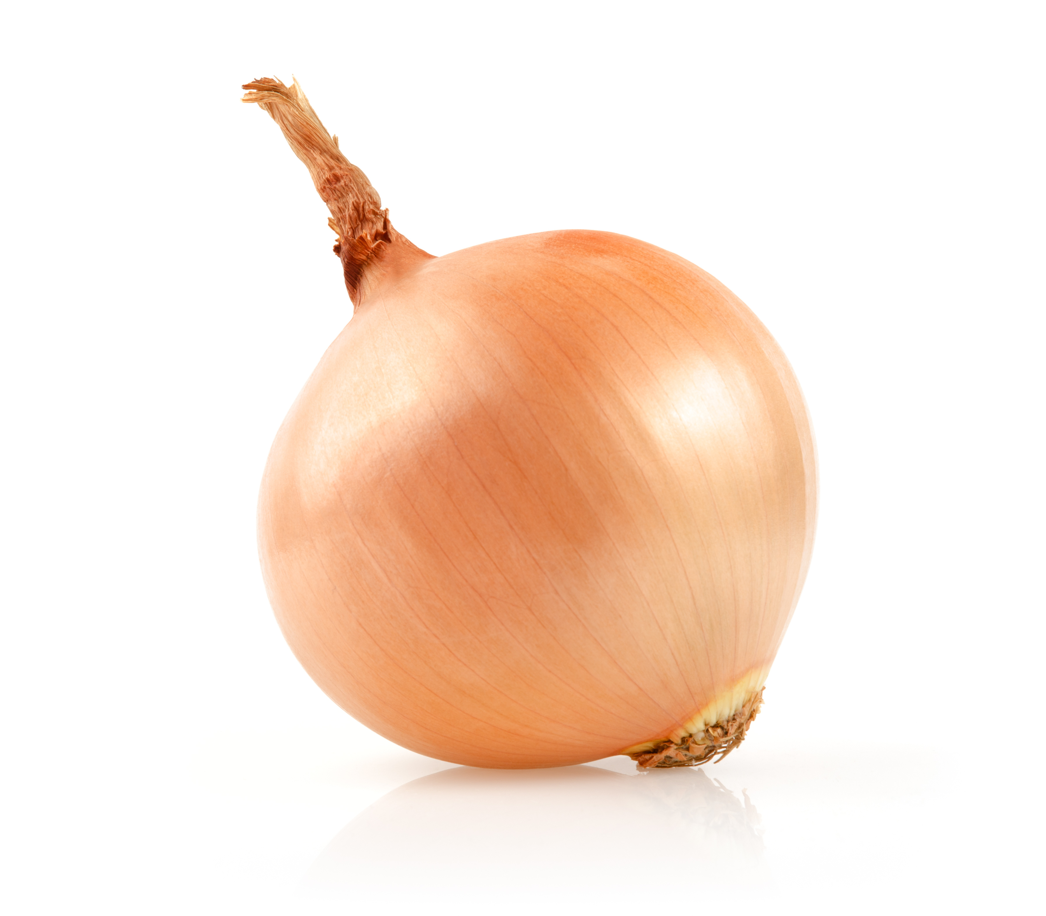 Amazing Onion Pictures & Backgrounds