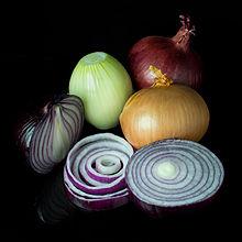 Onion Backgrounds, Compatible - PC, Mobile, Gadgets| 220x220 px