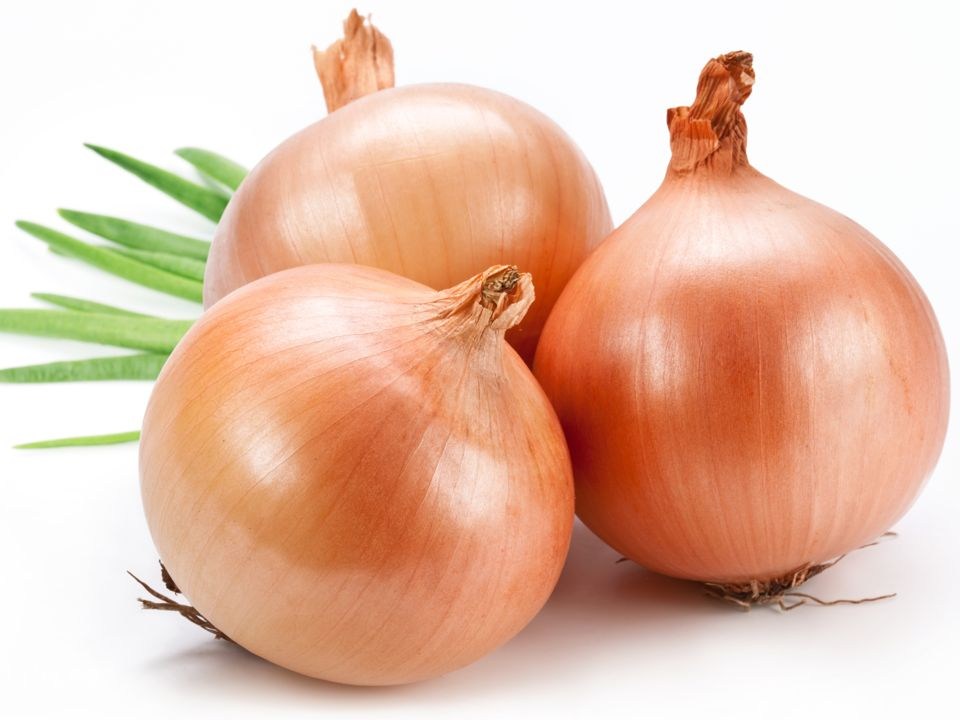 HD Quality Wallpaper | Collection: Food, 960x720 Onion