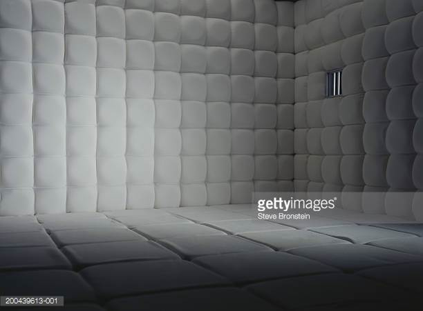 HQ Padded Room Wallpapers   File 19.88Kb