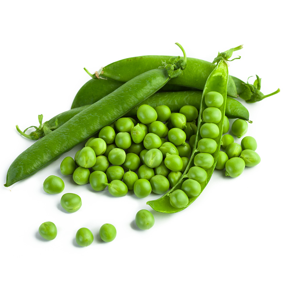 Pea High Quality Background on Wallpapers Vista
