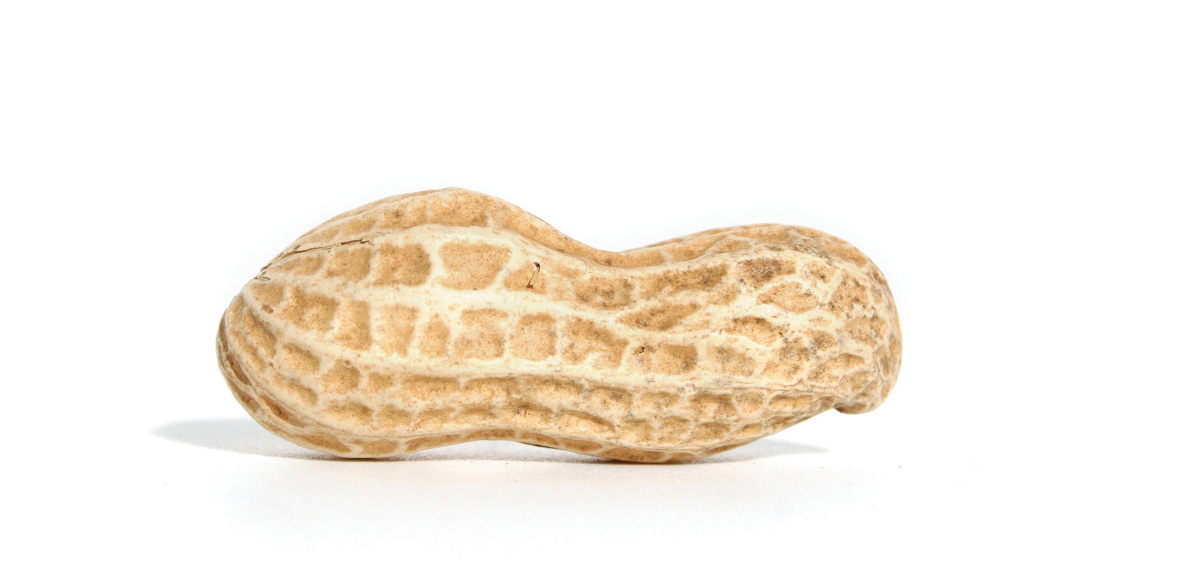 Peanut #5