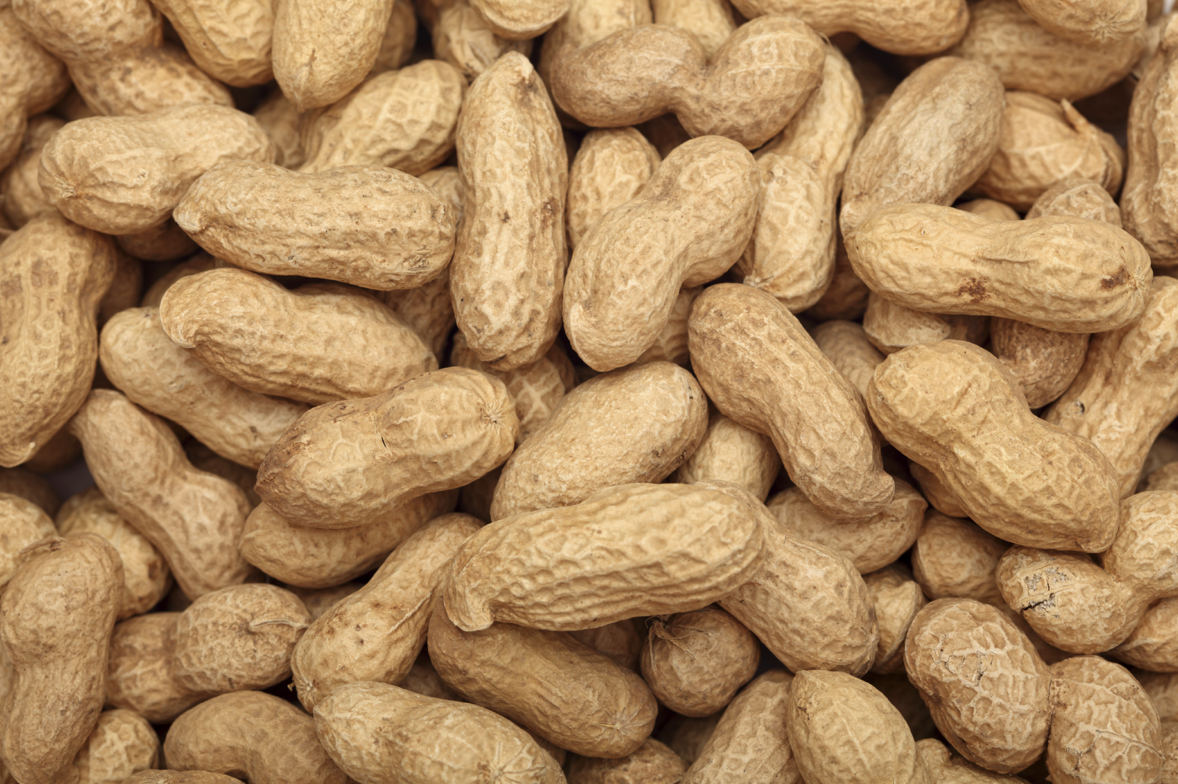 Amazing Peanut Pictures & Backgrounds