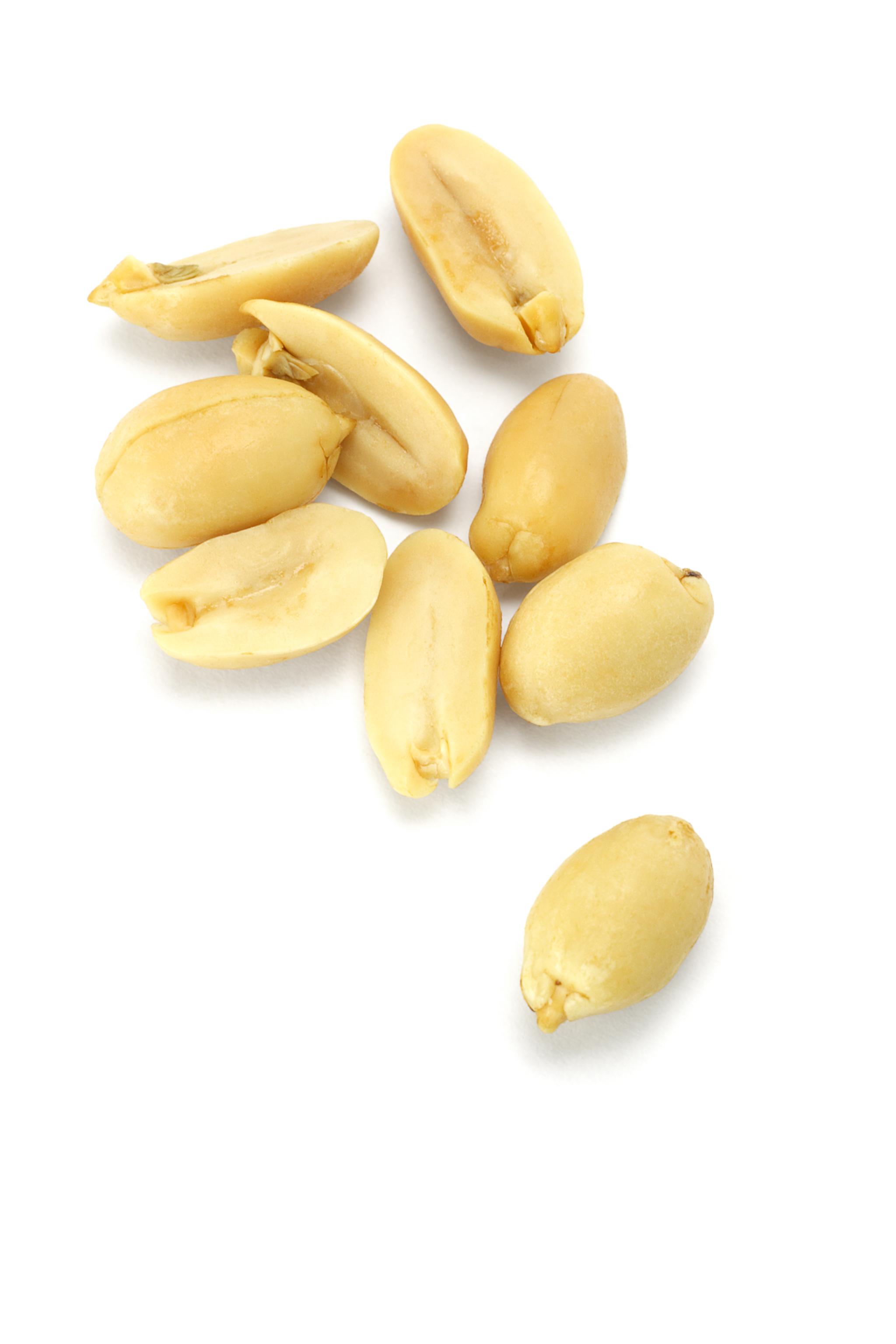 Peanut #8