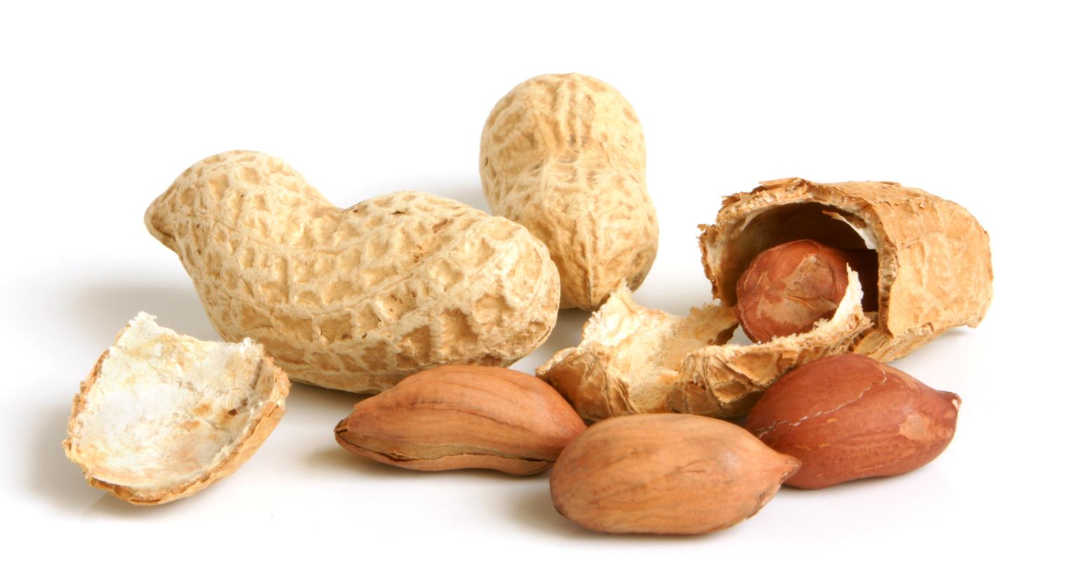 Peanut #1