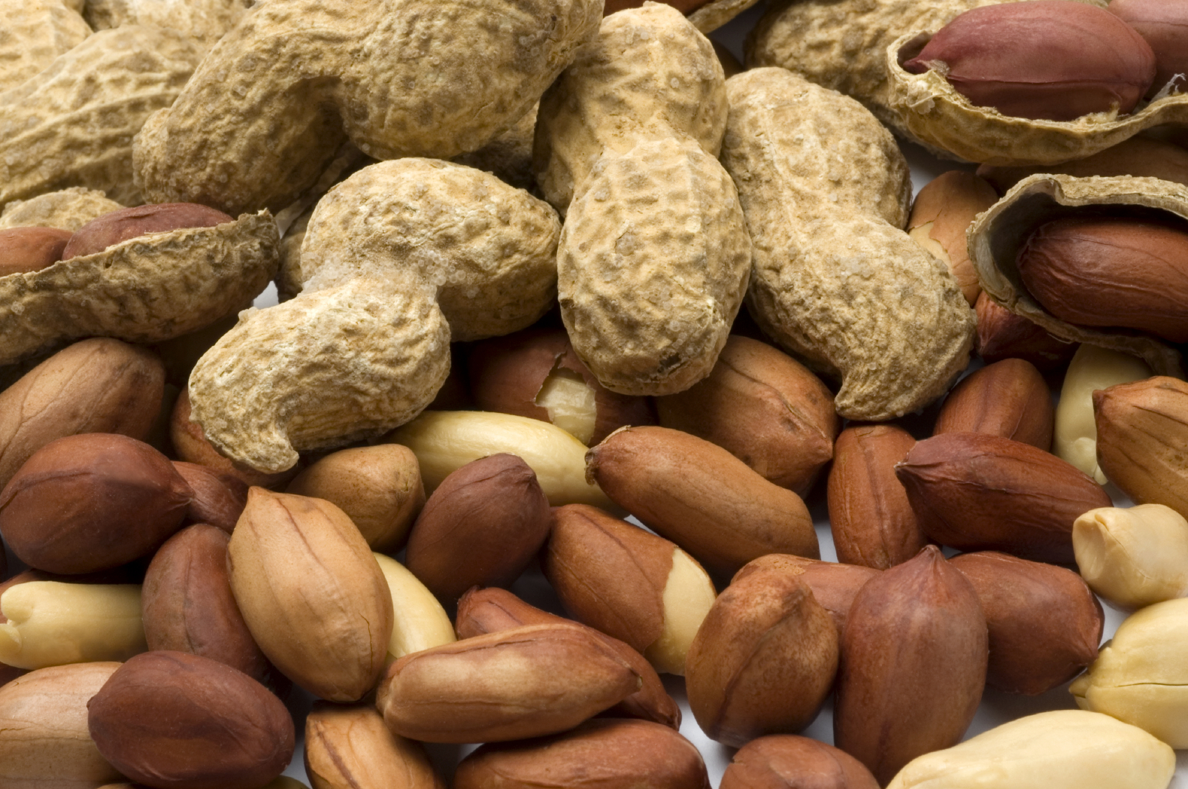 HD Quality Wallpaper | Collection: Food, 1700x1129 Peanut