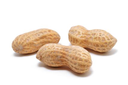 Peanut Pics, Food Collection