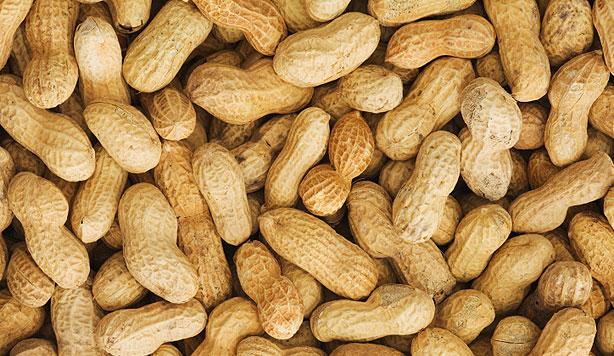 Peanuts HD wallpapers, Desktop wallpaper - most viewed