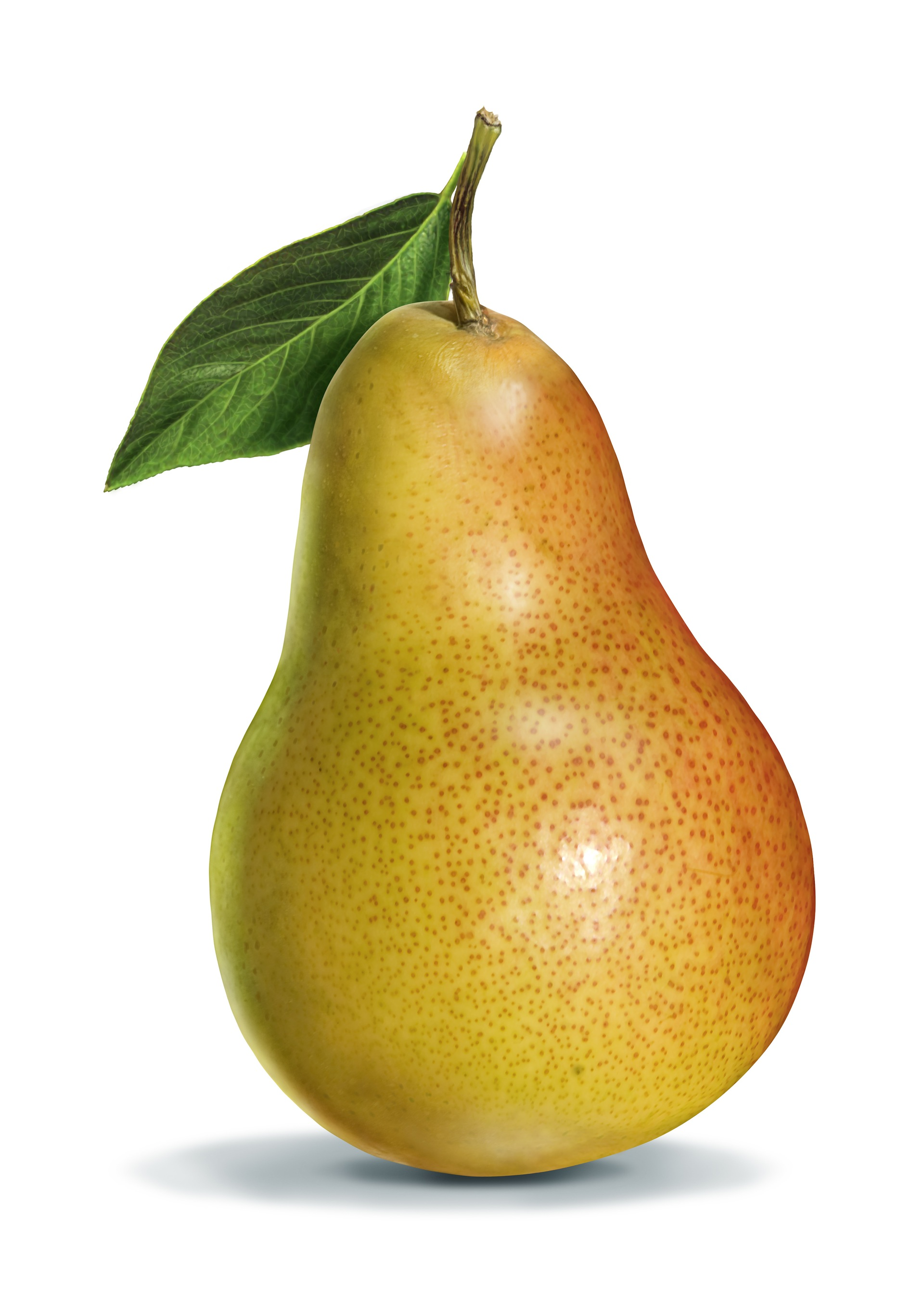 HQ Pear Wallpapers | File 429.03Kb