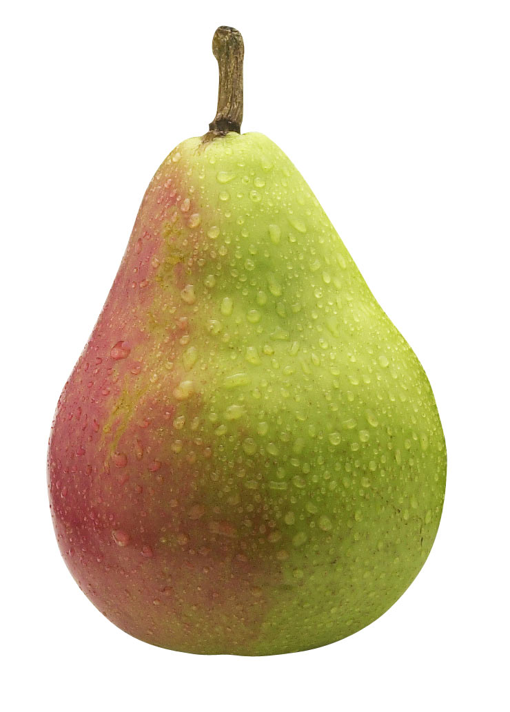 Nice wallpapers Pear 740x1034px