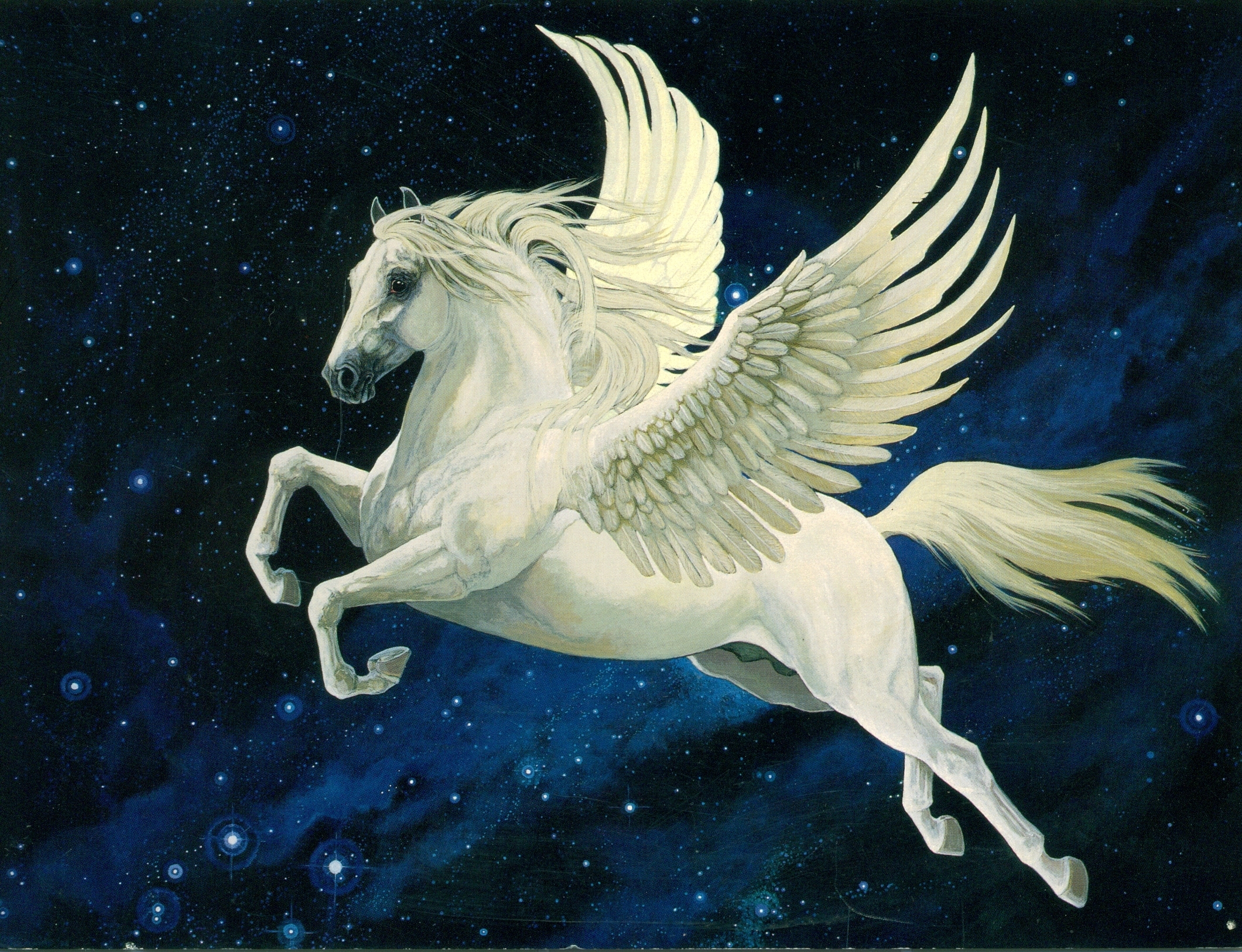 Pegasus High Quality Background on Wallpapers Vista