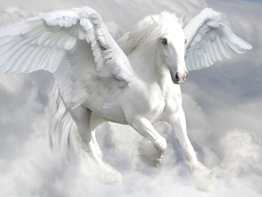 Pegasus Backgrounds on Wallpapers Vista