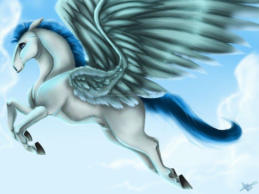 Images of Pegasus | 900x675