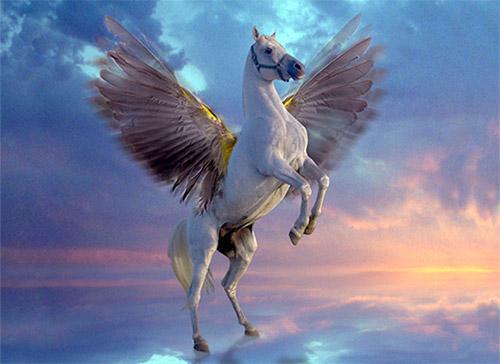 Images of Pegasus | 500x364