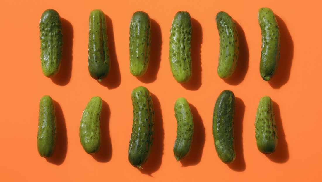 Pickles Backgrounds on Wallpapers Vista