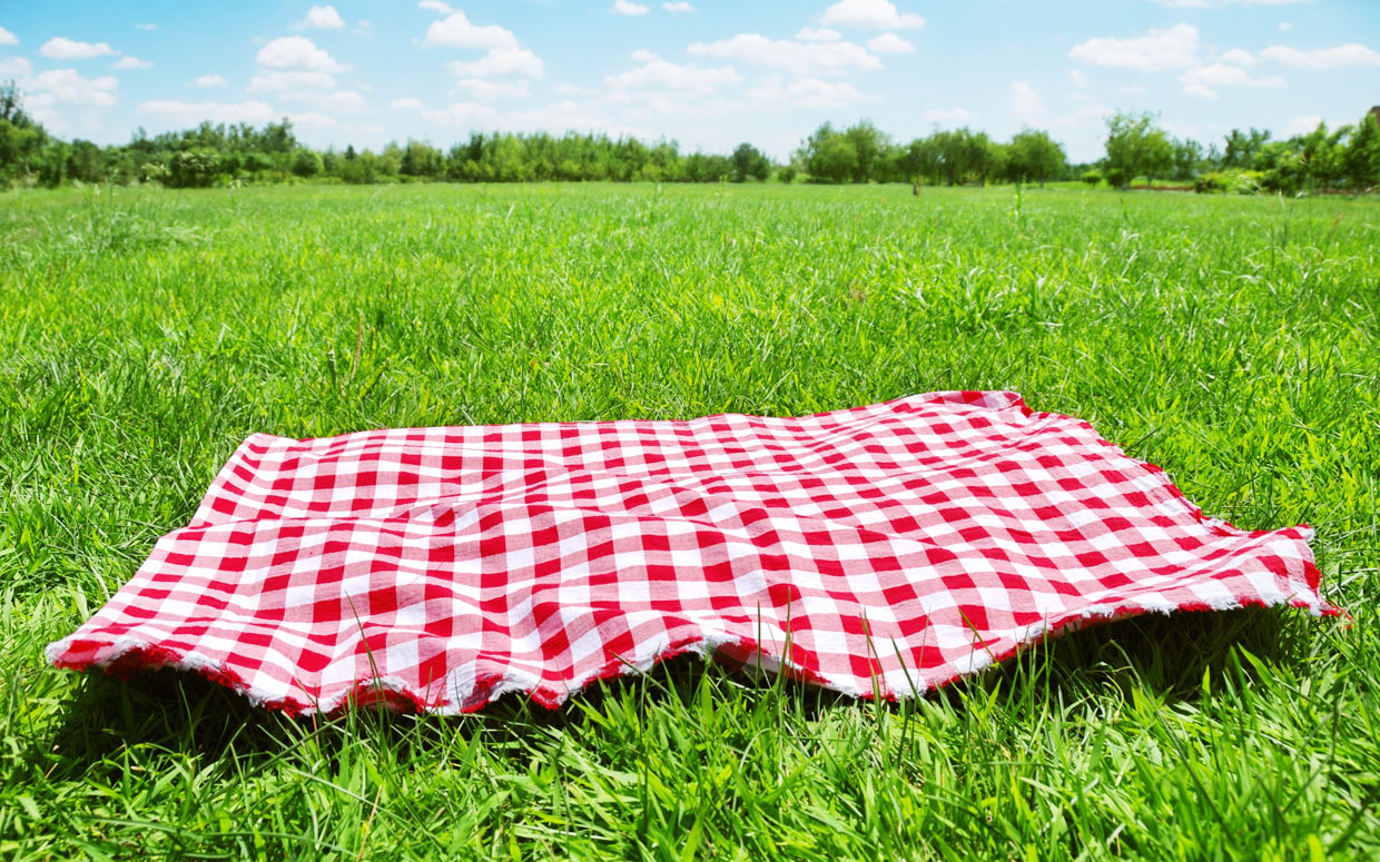 Nice wallpapers Picnic 1240x775px