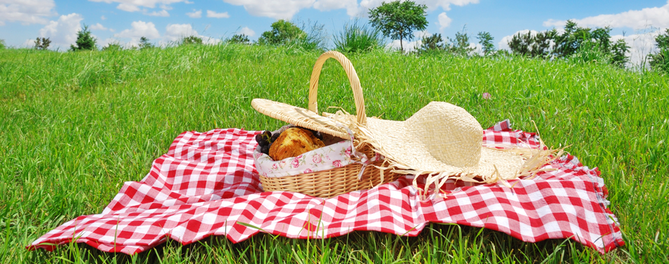 Images of Picnic   950x375
