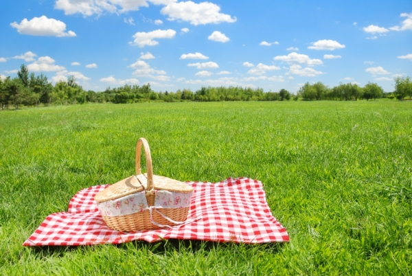 Picnic Backgrounds on Wallpapers Vista