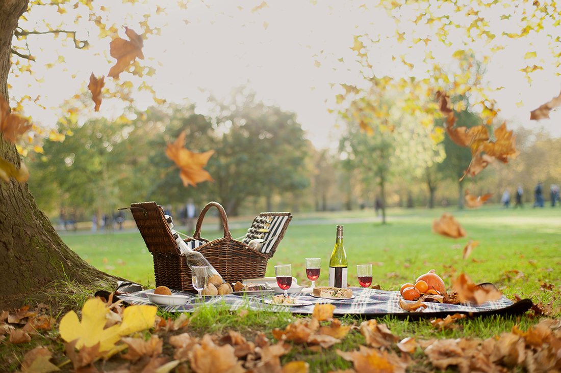 1100x733 > Picnic Wallpapers