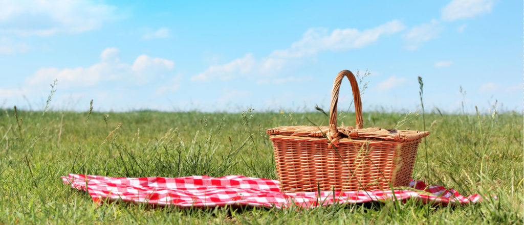 Amazing Picnic Pictures & Backgrounds